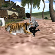 PETTING RINJI_001